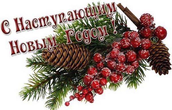 Поздравляю с наступившим новым годом пусть он будет