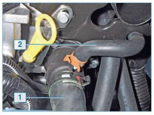Аналогично отсоединяем от патрубков крышки термостата подводящий шланг 1 радиатора и пароотводящий шланг 2.